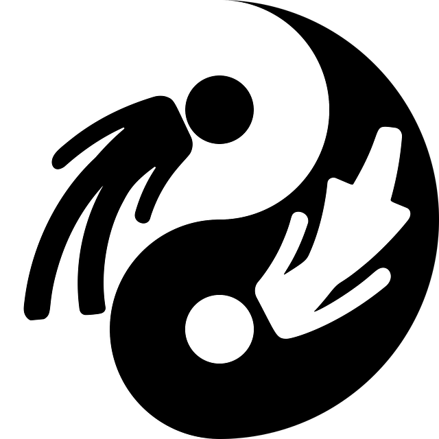 yin yan igualdad